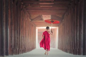 umbrella-1807513_1920